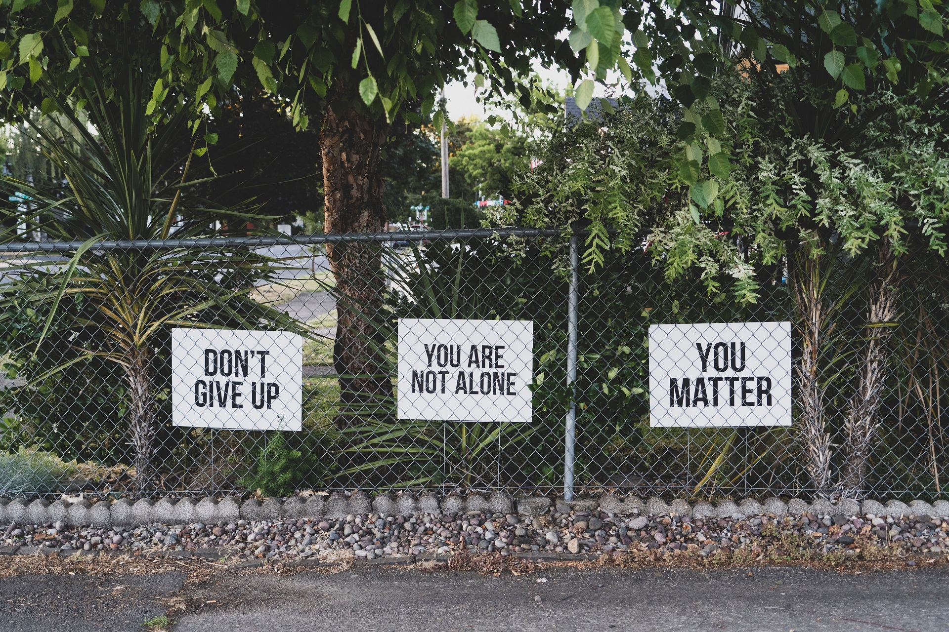 signs on fence